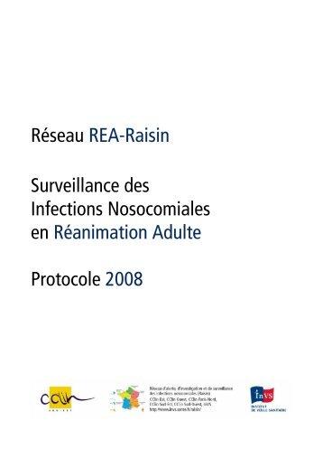Protocole 2008 - Institut de veille sanitaire