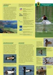 Halbinseln und Buchten im Lanker See - Landesamt für ...