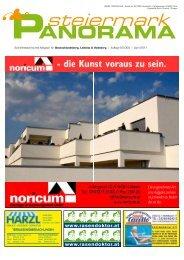 Ausgabe 03/11 - Steiermark Panorama