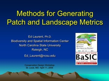 Methods for Generating Patch and Landscape Metrics