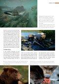 download pdf - David Bittner - Page 6