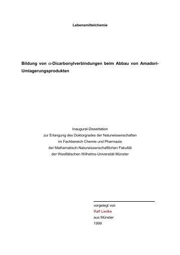 Dissertationsschrift - Ralf Liedke 1999