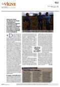 la Vigne - Les Vins Luberon - Page 2
