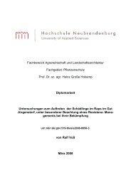 Pflanzenschutz Prof. Dr. sc. agr. Heinz Große Hokamp Diplom