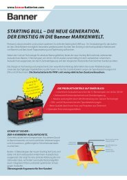 STARTING BULL DIE NEUE GENERATION. DER EINSTIEG IN DIE ...