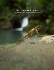 2011 annual report - Amphibian Rescue and Conservation Project