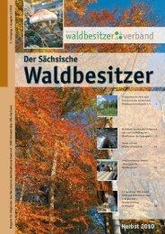 6. Jahrgang Ausgabe 3/2010 - Der Sächsische ...