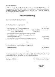 Haushaltssatzung - Landkreis Göppingen