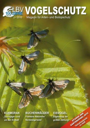 Buchenwälder Kormoran eisvogel Magazin für Arten- und ... - LBV