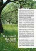 Buchenwälder Kormoran eisvogel Magazin für Arten- und ... - LBV - Seite 4