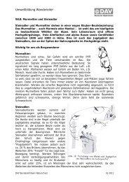 WL8 Murmeltier und Steinadler.pdf