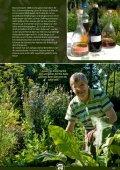 Gärtnern mit Kraut und Seele - Rühlemann's Kräuter & Duftpflanzen - Seite 2