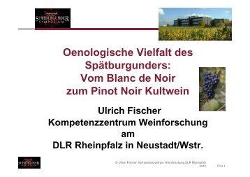 Ulrich Fischer über die Oenologische Vielfalt des Spätburgunders