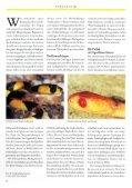 SELTENE SCHLANGEN AUS MADAGASKAR - Seite 2