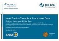 Neue Tinnitus-Therapie auf neuronaler Basis