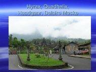 Hyrax,quadhelix,headgear, Delaire-féle maszk - Semmelweis ...