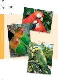 Tierbücher Frühjahr 2012 - Oertel & Spörer - Seite 4