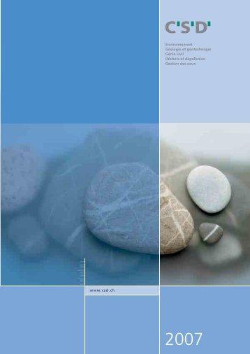 Rapport 2007 du groupe CSD
