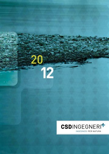 Rapporto CSD 2012
