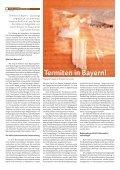 Termiten in Bayern! - Seite 2