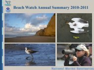Beach Watch - Gulf of the Farallones National Marine Sanctuary ...