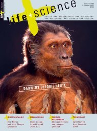 L+S-Ausgabe_3-2009 K4.indd - life + science