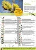 Wunderwelt der Bienen - Altmünster - Seite 4