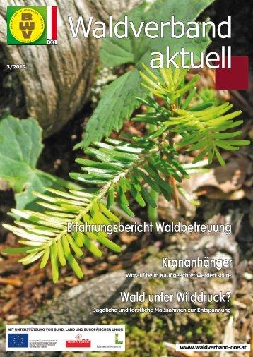 Erfahrungsbericht Waldbetreuung Krananhänger Wald unter ...