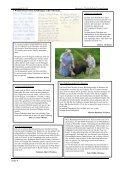 Termine und Ferien im Schuljahr 2006/2007 - Integrative ... - Seite 4