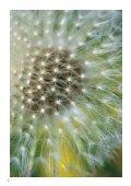 Jahresbericht 2009 - Nature & Economie - Seite 4