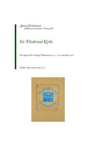 Læs hvad han fik ud af sine tre - Viborg Stift