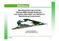Aktivitäten von Nehlsen in Mecklenburg-Vorpommern