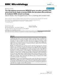 The Mycoplasma pneumoniae MPN229 gene encodes a protein that ...