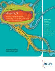 Strep•Tag® II - The Wolfson Centre for Applied Structural Biology