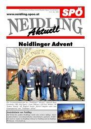 Neidlinger Advent - SPÖ Neidling
