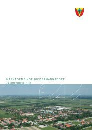 (3,74 MB) - .PDF - Biedermannsdorf