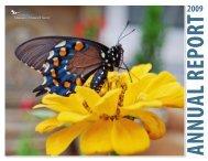 2009 Annual Report - Santa Barbara Museum of Natural History