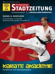 Download gesamte Ausgabe (PDF, 21221 kb) - Regensburger ...