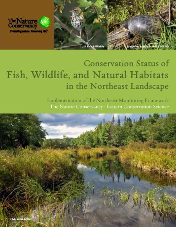 Conservation Status of Fish, Wildlife, and Natural ... - (RCN) Program