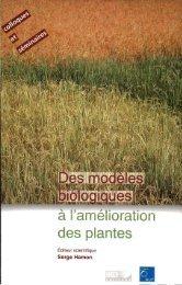 Des modèles biologiques à l'amélioration des plantes - IRD