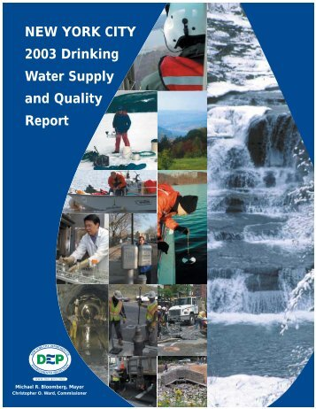 NEW YORK CITY 2003 Drinking Water Supply and ... - NYC.gov