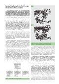 Report der Deutschen Wildtier Stiftung 2002 - Deutsche Wildtier ... - Page 6