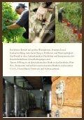 Merlot 2005, Isonzo del Friuli - Tenuta di Blasig - Seite 5