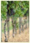 Merlot 2005, Isonzo del Friuli - Tenuta di Blasig - Seite 7