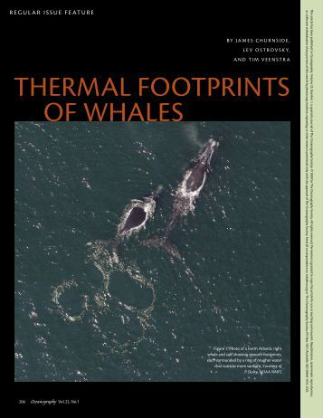 Thermal FooTpriNTs oF Whales - ePrints Soton