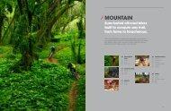 Mountain - Vintage Trek