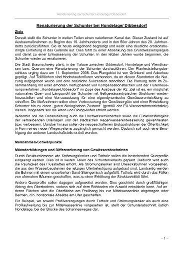 Renaturierung der Schunter bei Hondelage/ Dibbesdorf - Bund für ...