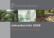 Jahresbericht 2008 - Archäologie Baselland - Kanton Basel ...