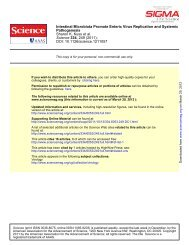 Kuss SK, et al. Intestinal microbiota promote enteric