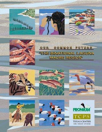ourcommonfuture the binational laguna madre region